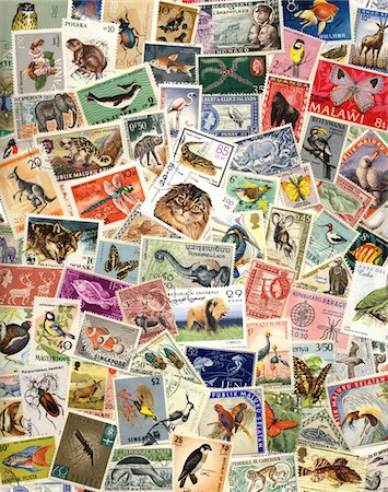 stamp - Assortment of postage stamps with animals Stock Photo - Premium Royalty-Free, Code: 6106-05508754