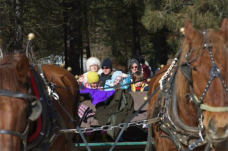 Multi-generation family riding in horsedrawn sleigh Stock Photo - Premium Royalty-Free, Code: 6106-05537702