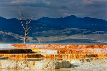 Minerva Terrace, Mammoth Hot Springs Stock Photo - Premium Royalty-Free, Code: 6106-05952411