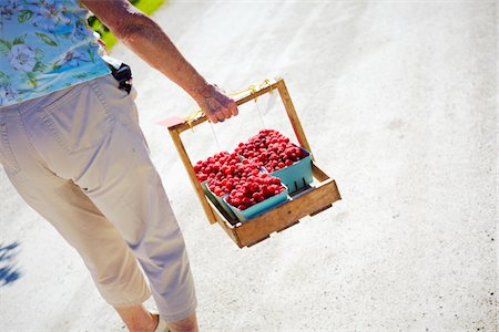 selecting - Family picking berrys in the summr sun canada Stock Photo - Premium Royalty-Free, Code: 6106-06042780