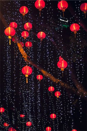 Chinese lanterns hanging from tree Stock Photo - Premium Royalty-Free, Code: 6106-06114708