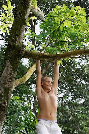young boy in tree Stock Photo - Premium Royalty-Free, Code: 6106-06310893
