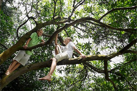 two young boys in tree Stock Photo - Premium Royalty-Free, Code: 6106-06310896