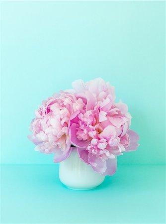 peony - Peonies in a white vase Stock Photo - Premium Royalty-Free, Code: 6106-06434425