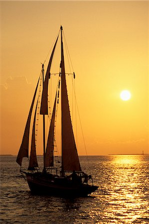 sailboat  ocean - Sailboat sailing in golden sunset light, Miami, FL Stock Photo - Premium Royalty-Free, Code: 6106-06830850