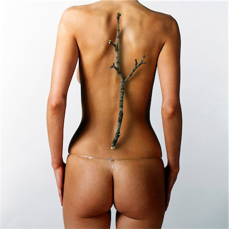 Woman with twig placed over line of backbone, rear view Stock Photo - Premium Royalty-Free, Code: 6106-06978629