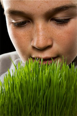 Boy (12-13) smelling wheatgrass, close-up of face Stock Photo - Premium Royalty-Free, Code: 6106-07023211