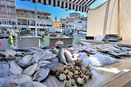 france - Fishing days on the market port-les-Flots Palavas Stock Photo - Premium Royalty-Free, Code: 6106-07120505