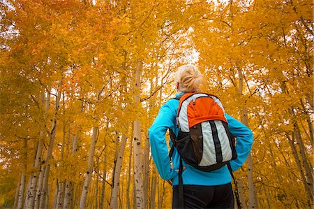 fall - Woman hiking on path in fall colors Stock Photo - Premium Royalty-Free, Code: 6106-07350862