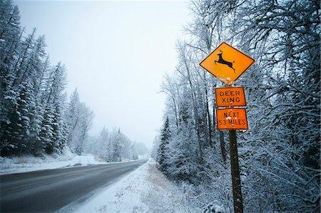 Deer crossing sign along snowy road. Stock Photo - Premium Royalty-Free, Code: 6106-07454767