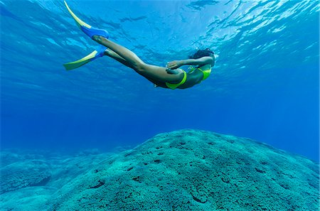 Female snorkeler and coral reef. Stock Photo - Premium Royalty-Free, Code: 6106-07454953