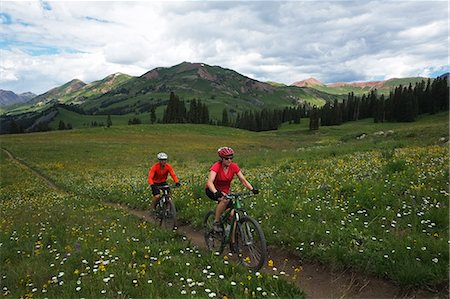 Couple mountain biking in high mountains,Aspen, Colorado, USA Stock Photo - Premium Royalty-Free, Code: 6106-07455517