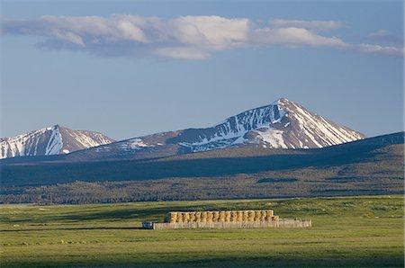 Bighole Valley Montana Stock Photo - Premium Royalty-Free, Code: 6106-07594804