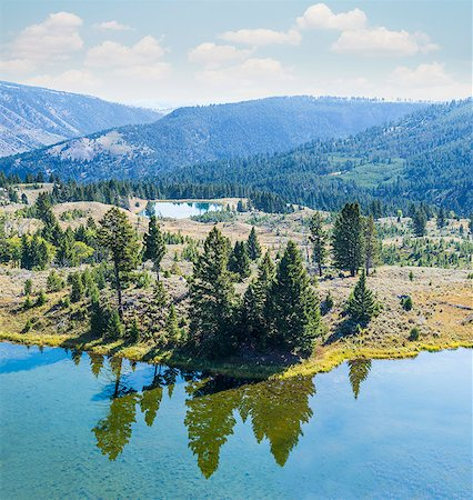 Evergreen Trees Reflected in Still Water Stock Photo - Premium Royalty-Free, Code: 6106-08172170