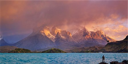 scenic view - Chile, Patagonia, Torres del Paine National Park Stock Photo - Premium Royalty-Free, Code: 6106-08172704