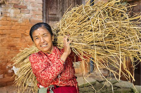 Nepali woman carrying a straw in Bhaktapur Stock Photo - Premium Royalty-Free, Code: 6106-08277806