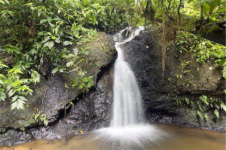 Rainforest waterfall Stock Photo - Premium Royalty-Free, Code: 6106-08278559
