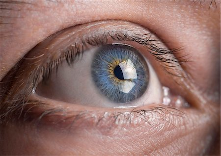 Close up of a blue eye Stock Photo - Premium Royalty-Free, Code: 6106-08634255