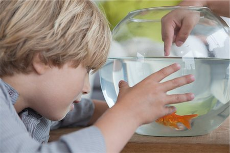 Close-up of a boy looking at fishbowl Stock Photo - Premium Royalty-Free, Code: 6108-05871219