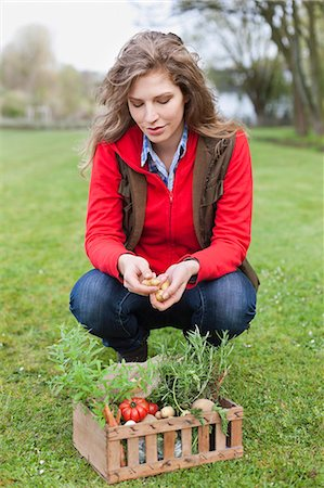 farmhand (female) - Woman putting vegetables in a crate Stock Photo - Premium Royalty-Free, Code: 6108-06166673