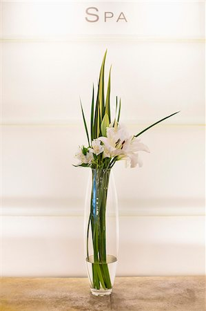 Close-up of a vase of flowers Stock Photo - Premium Royalty-Free, Code: 6108-06907464