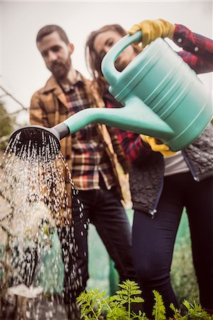 Couple watering plants together Stock Photo - Premium Royalty-Free, Code: 6109-08398979