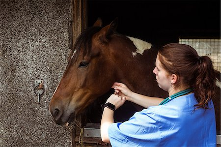 scroll - Vet examining horse in stable Stock Photo - Premium Royalty-Free, Code: 6109-08399550