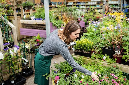 Beautiful woman checking potted plants in garden centre Stock Photo - Premium Royalty-Free, Code: 6109-08701148