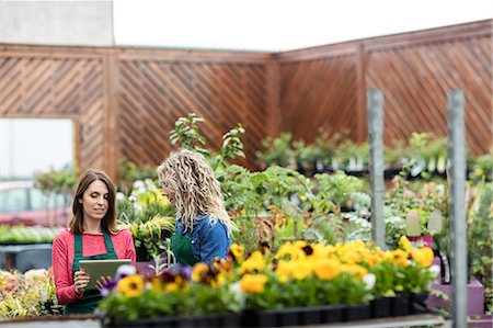 florist - Two female florist using digital tablet in garden centre Stock Photo - Premium Royalty-Free, Code: 6109-08701255