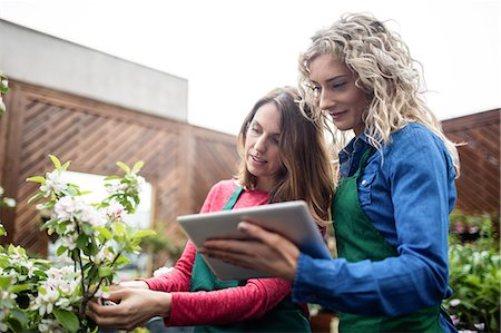 florist - Two female florist using digital tablet while checking plants in garden centre Stock Photo - Premium Royalty-Free, Code: 6109-08701261