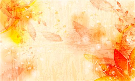 spring background - Flora Background Stock Photo - Premium Royalty-Free, Code: 6111-06728205