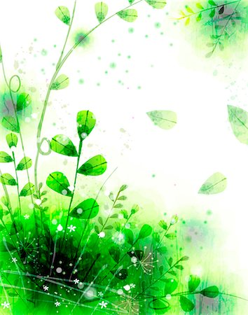 spring background - Flora Background Stock Photo - Premium Royalty-Free, Code: 6111-06728208