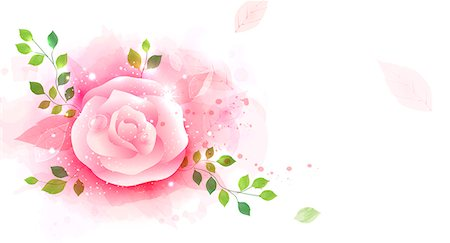 Illustration of abstract pink rose Stock Photo - Premium Royalty-Free, Code: 6111-06728330