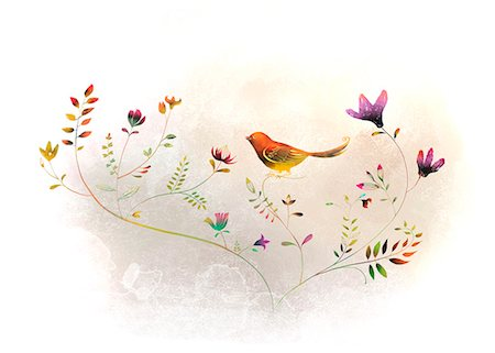 flower illustration - Bird On Flowering Tree Stock Photo - Premium Royalty-Free, Code: 6111-06728992