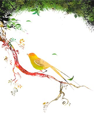 Bird Sitting On Branch Of Tree Stock Photo - Premium Royalty-Free, Code: 6111-06728998