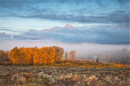 rugged landscape - Mist over rural landscape Stock Photo - Premium Royalty-Free, Code: 6113-06625501