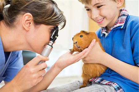 Boy holding guinea pig in vet examination Stock Photo - Premium Royalty-Free, Code: 6113-06626497