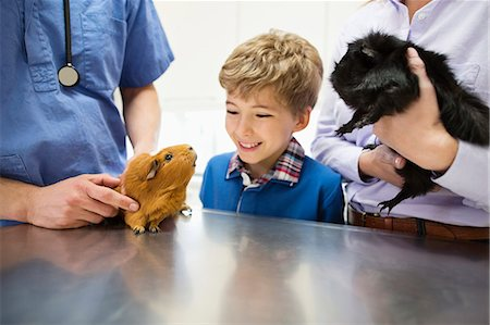 Veterinarian and owner examining guinea pig in vet's surgery Stock Photo - Premium Royalty-Free, Code: 6113-06626420