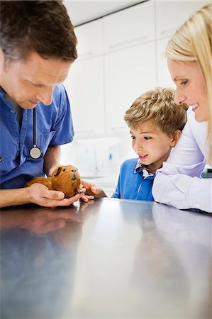Veterinarian and owners examining guinea pig in vet's surgery Stock Photo - Premium Royalty-Free, Code: 6113-06626514