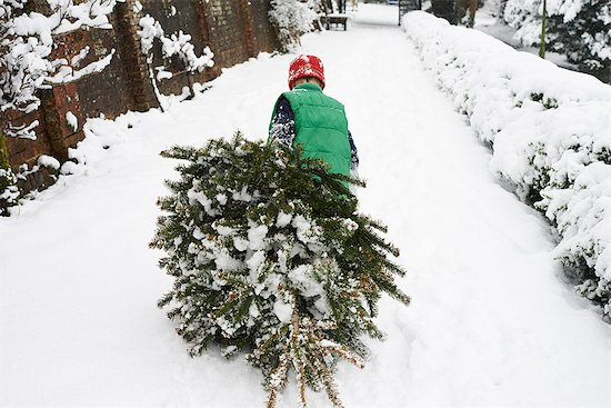 Boy dragging Christmas tree down street Stock Photo - Premium Royalty-Free, Image code: 6113-06753392