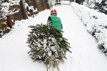 snow christmas tree white - Boy dragging Christmas tree down street Stock Photo - Premium Royalty-Free, Code: 6113-06753392