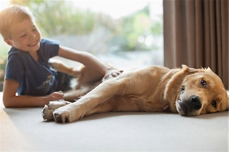 Smiling boy petting dog in living room Stock Photo - Premium Royalty-Free, Code: 6113-06720940
