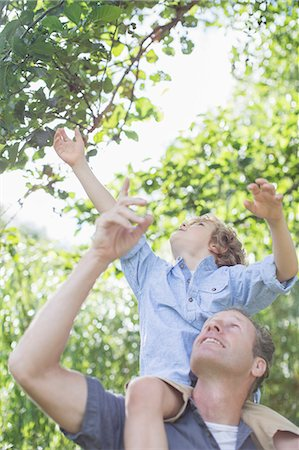sitting under tree - Father carrying son on shoulders below tree Stock Photo - Premium Royalty-Free, Code: 6113-07242440