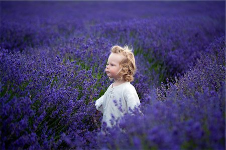 Boy walking in field of lavender Stock Photo - Premium Royalty-Free, Code: 6113-07542393