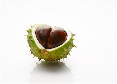 Close up of chestnut with exposed seed Stock Photo - Premium Royalty-Free, Code: 6113-07543094