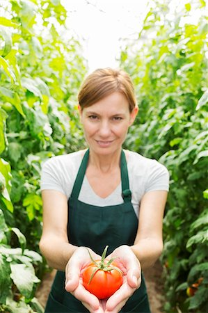 Portrait of woman holding ripe tomato in greenhouse Stock Photo - Premium Royalty-Free, Code: 6113-07589175