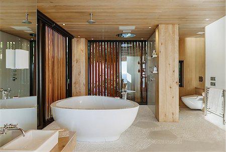 Modern bathroom with soaking tub Stock Photo - Premium Royalty-Free, Code: 6113-07648948