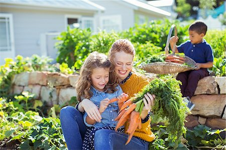 Student and teacher picking carrots in field Stock Photo - Premium Royalty-Free, Code: 6113-07731180