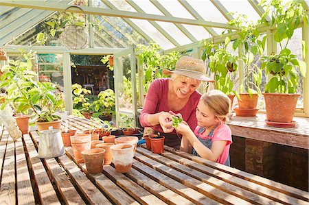 potted plant - Grandmother and granddaughter potting plants in greenhouse Stock Photo - Premium Royalty-Free, Code: 6113-08424250