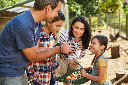 farming (raising livestock) - Family harvesting fresh eggs from chicken outside coop Stock Photo - Premium Royalty-Free, Code: 6113-08424226